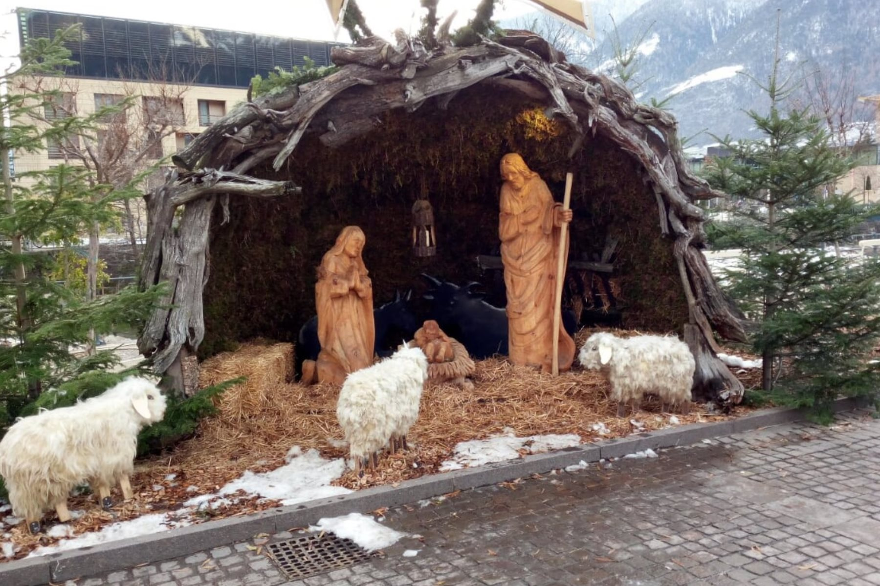Weihnachtsgedanken der Meraner Freiheitlichen