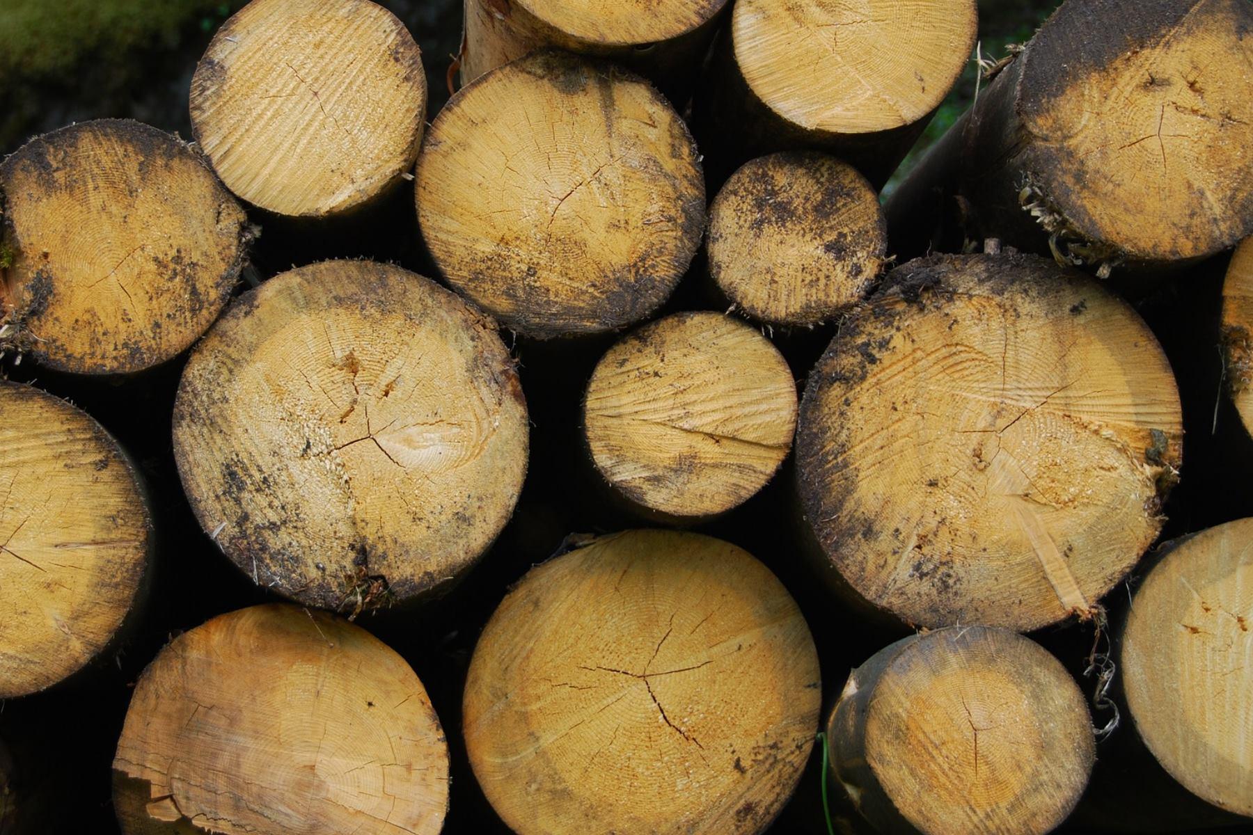 Anfrage   Fernwärme – Methangas oder Biomasse